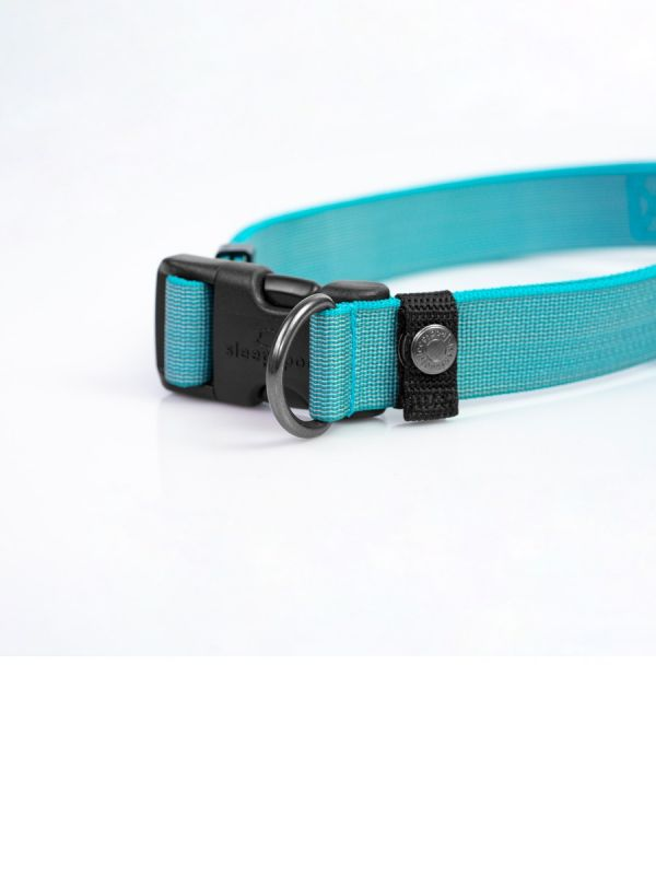 Locking Martingale Collar